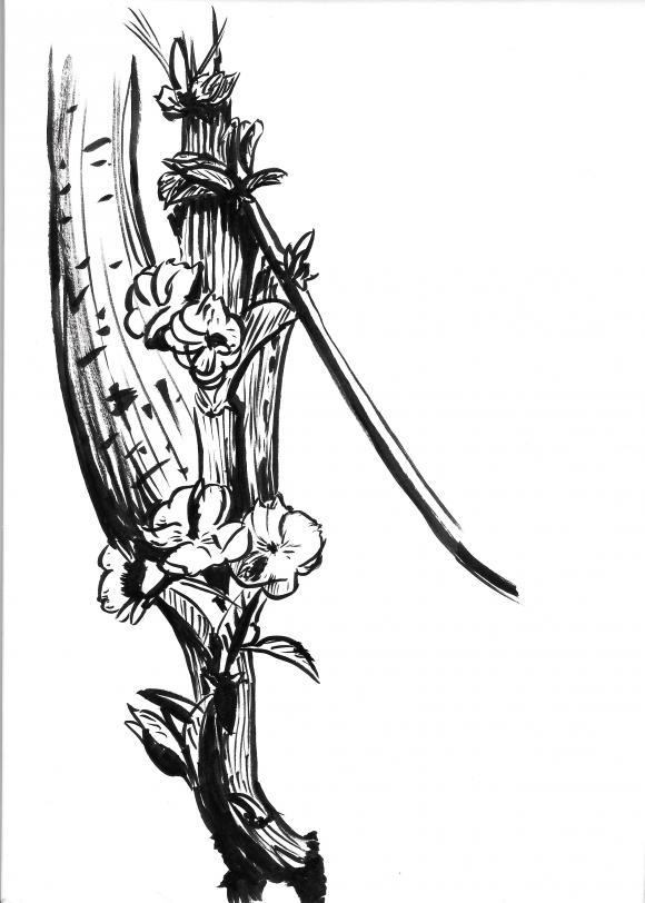 http://death-scythe.cowblog.fr/images/dessinsurleblog-1/Numeriser15.jpg